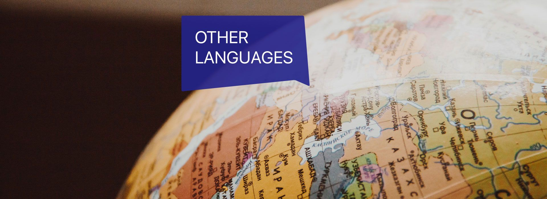 Other Language Courses